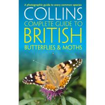 Collins complete guide to butterflies and moths product photo