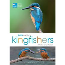 RSPB Spotlight kingfishers product photo