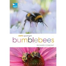 RSPB Spotlight bumblebees product photo