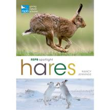 RSPB Spotlight hares product photo