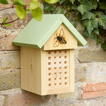 Solitary bee home product photo
