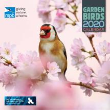 RSPB Garden birds calendar 2020 product photo