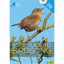 RSPB Guide to Birdsong by Adrian Thomas product photo