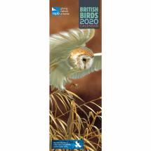 RSPB Illustrated British birds calendar 2020 product photo