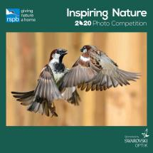 RSPB Inspiring nature calendar 2020 product photo