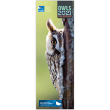 RSPB Owls calendar 2021 product photo