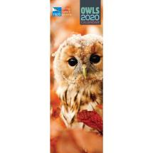 RSPB Owls calendar 2020 product photo