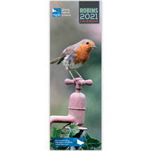 RSPB Robins slim wall calendar 2021 product photo