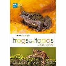RSPB Spotlight Frogs and Toads product photo