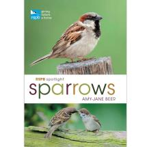 RSPB Spotlight Sparrows product photo