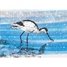Shimmering shallows RSPB charity Christmas cards - 10 pack product photo