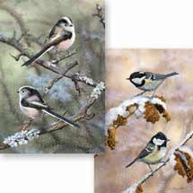 Snowy duo RSPB charity Christmas cards - 10 pack product photo