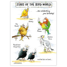 Stars of the bird world birthday card product photo