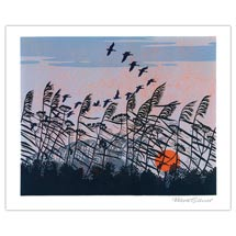Sunset flight greetings card product photo