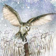 Twilight landing RSPB charity Christmas cards - 10 pack product photo