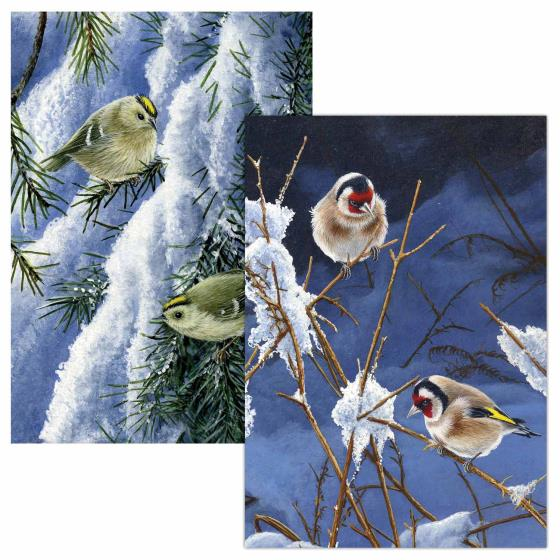 A golden Christmas RSPB charity cards - 10 pack product photo