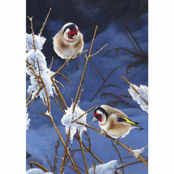 A golden Christmas RSPB charity cards - 10 pack product photo Side View -  - additional image 3 L
