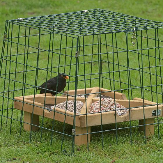 Ground Protector Wide Mesh Rspb Bird Table Guardians