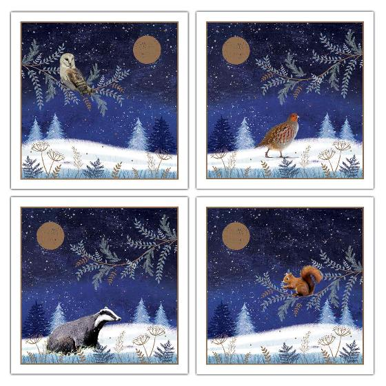 Enchanted glade RSPB charity Christmas cards - 20 pack product photo