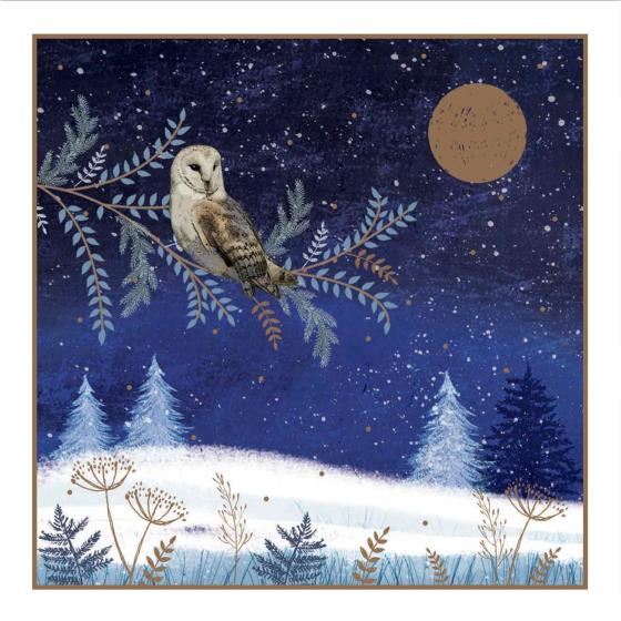 Enchanted glade RSPB charity Christmas cards - 20 pack product photo Side View -  - additional image 3 L