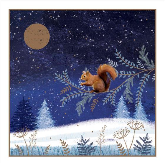 Enchanted glade RSPB charity Christmas cards - 20 pack product photo Back View -  - additional image 2 L
