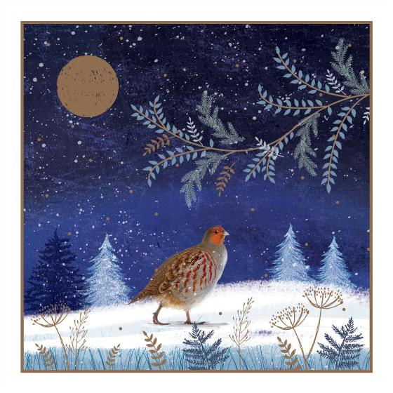 Enchanted glade RSPB charity Christmas cards - 20 pack product photo Front View - additional image 1 L