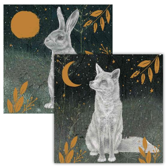 Enchanted moonlight RSPB charity Christmas cards - 10 pack, 2 designs product photo