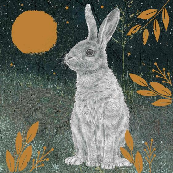 Enchanted moonlight RSPB charity Christmas cards - 10 pack, 2 designs product photo Back View -  - additional image 2 L