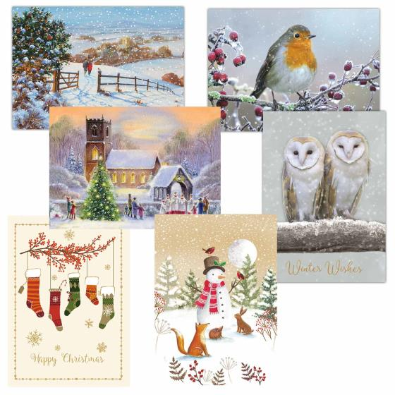 Fab forty RSPB charity Christmas cards - 40 pack product photo Back View -  - additional image 2 L