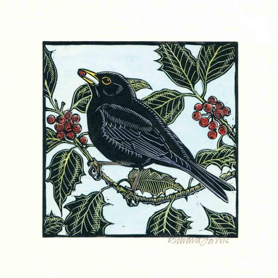 Hiding in the holly RSPB charity Christmas cards - 10 pack product photo Default L