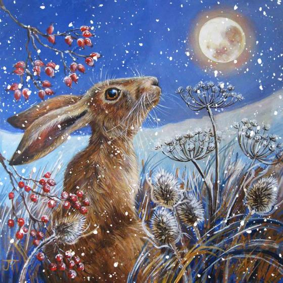 Moon gazing hare RSPB charity Christmas cards - 10 pack product photo Default L