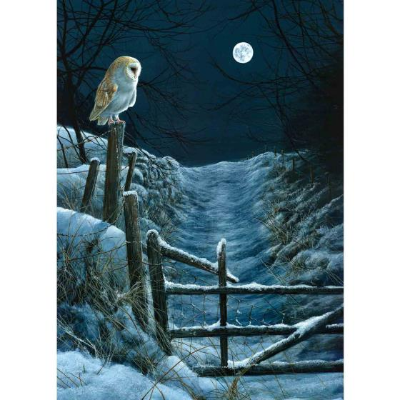 Moonlit path RSPB charity Christmas cards - 10 pack product photo Default L