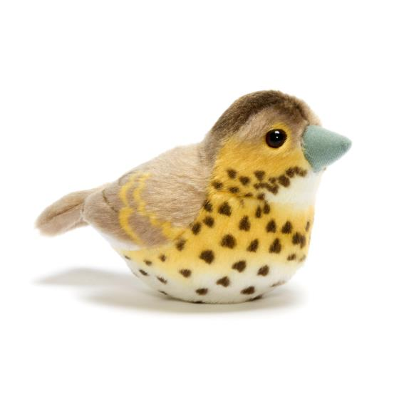 RSPB singing song thrush soft toy product photo Default L