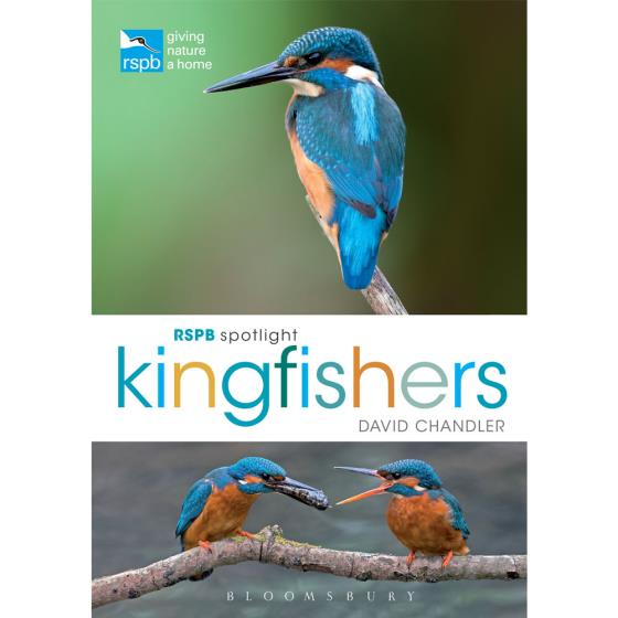 RSPB Spotlight kingfishers product photo Default L