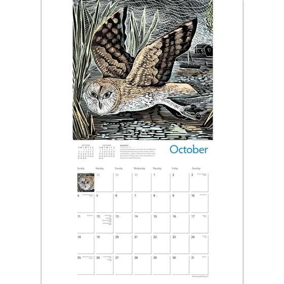 RSPB Angela Harding calendar 2020 product photo Side View -  - additional image 3 L