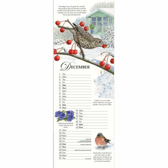 RSPB Friends and Neighbours calendar 2020 product photo Front View - additional image 1 L
