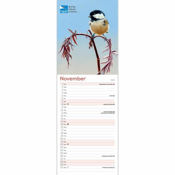 RSPB Illustrated British birds calendar 2020 product photo Front View - additional image 1 L