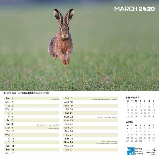 RSPB Inspiring nature calendar 2020 product photo Side View -  - additional image 3 L
