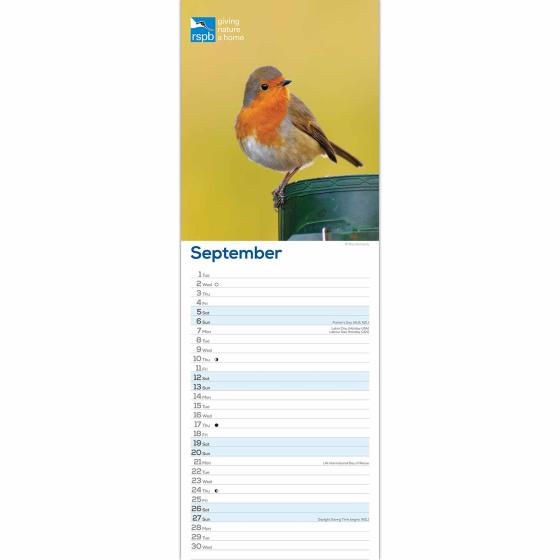 RSPB Robins 2020 slim wall calendar product photo Side View -  - additional image 3 L