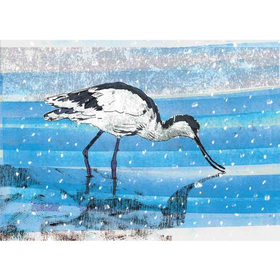 Shimmering shallows RSPB charity Christmas cards - 10 pack product photo Default L