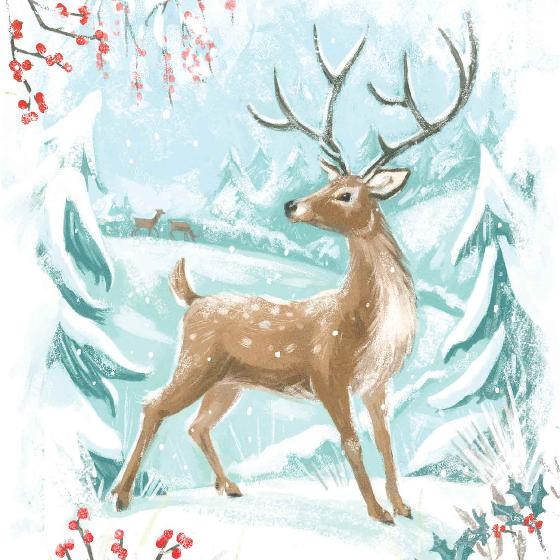 Winter wonderland RSPB charity Christmas cards - 10 pack, 2 designs product photo Back View -  - additional image 2 L