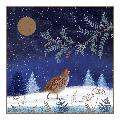 Enchanted glade RSPB charity Christmas cards - 20 pack product photo Front View - additional image 1 T