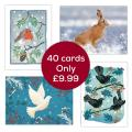Fab forty RSPB charity Christmas cards - 40 pack product photo