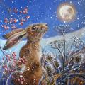 Moon gazing hare RSPB charity Christmas cards - 10 pack product photo