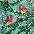 Winter forest birds RSPB charity Christmas cards - 10 pack, 2 designs product photo Side View -  - additional image 3 T