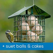 Dual suet feeder starter pack with fat balls & cakes product photo