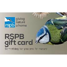 RSPB Shop gift card, blue tit design product photo