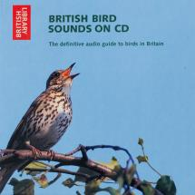 British bird sounds CD product photo