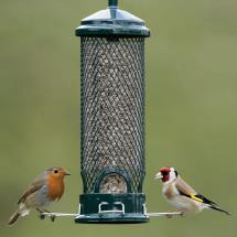 Squirrel Buster Mini seed feeder product photo