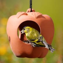 Terracotta apple bird feeder product photo